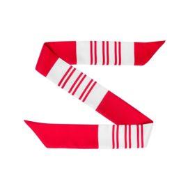 N&G Silk Bag Scarf - Jheel